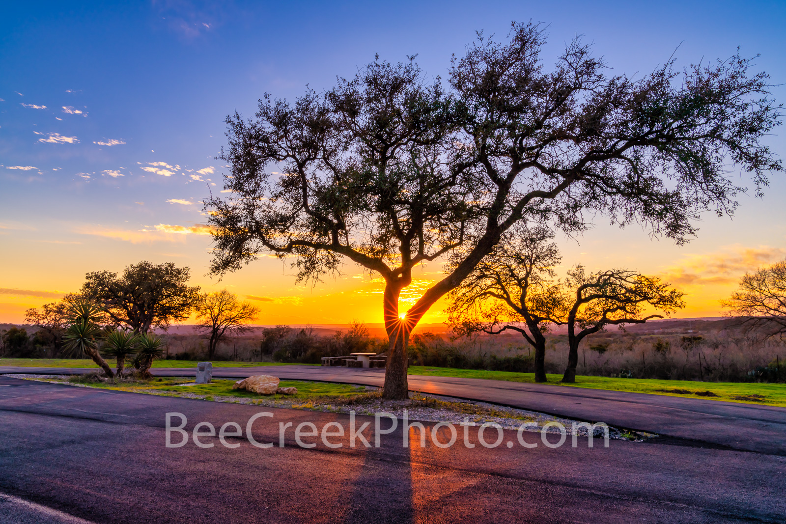 texas, rest stop, texas hill country, hill country, sunset, landscape, landscapes, tree, trees, yucca, road, colors, sunset colors, yellow, orange, blue, llano county,