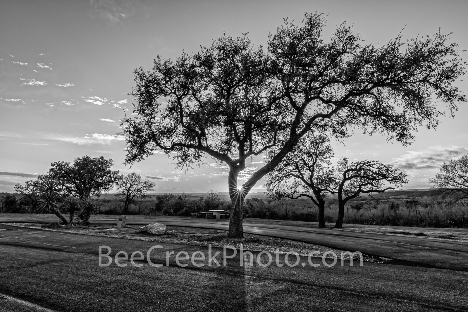Hill Country Rest Stop Sunset BW - We captured this hill country rest stop right at sunset as the sun rays came through this...