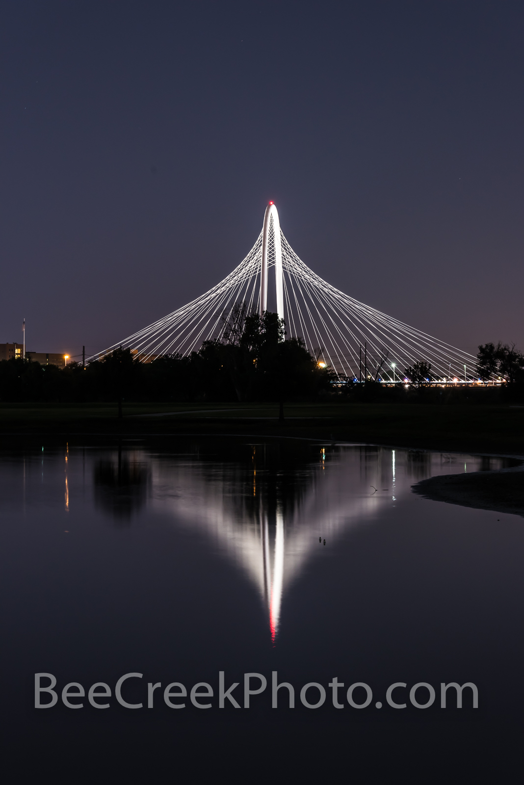 Dallas, Margaret Hunt Hill Bridge, dallas downtown, city of dallas, pictures of dallas, reflection, downtown, night, Trinity River,  vertical,, photo