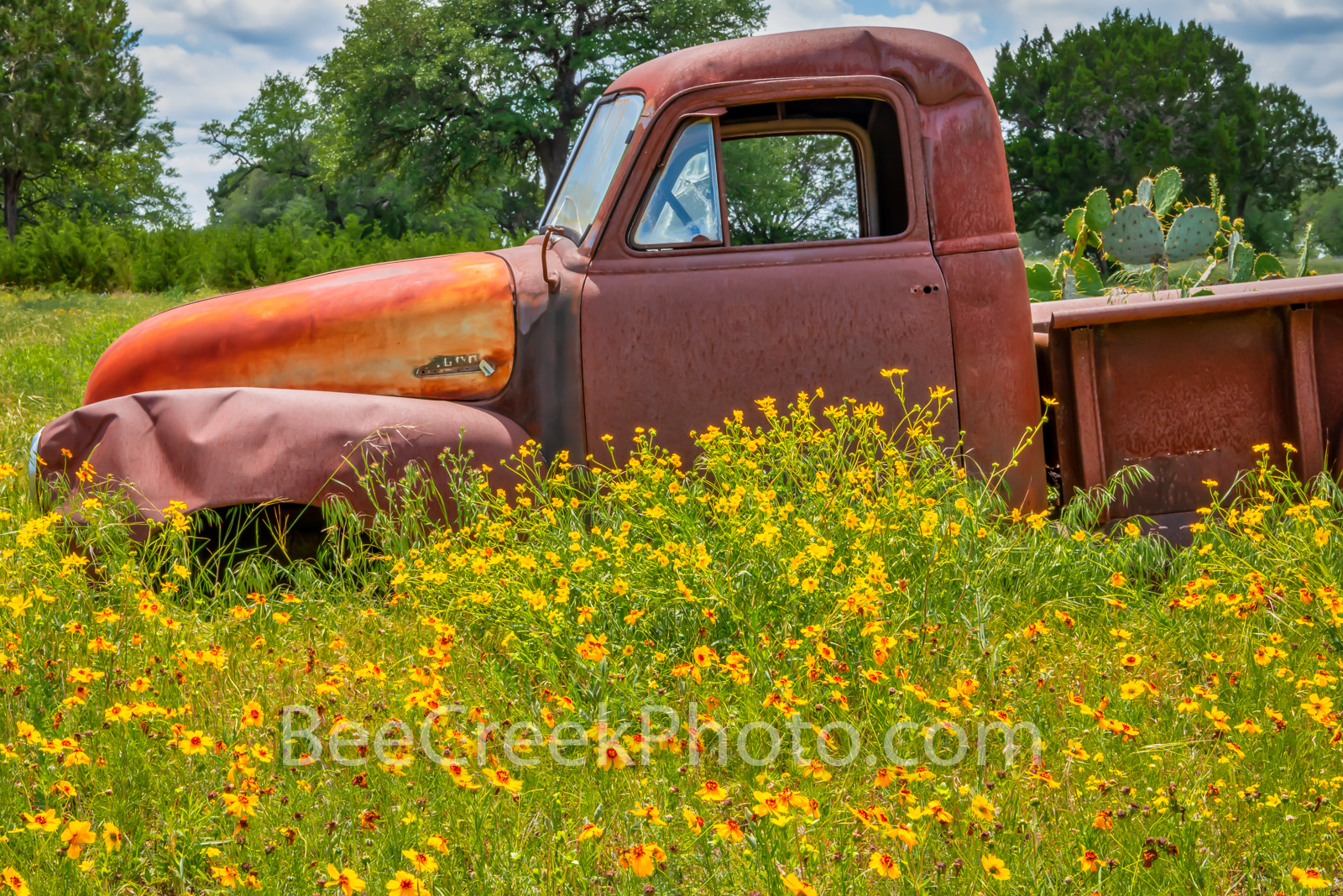 Old Truck and Wildflowers - Found this old truck out in the Texas hill country with yellow wildflowers surrounding the truck...