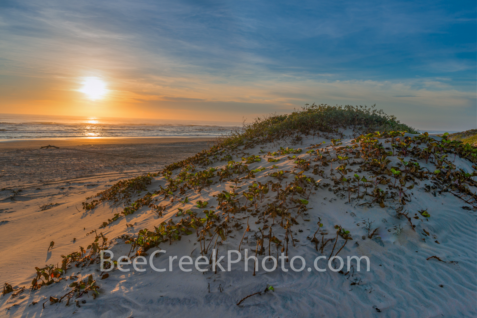 South Padre Island, beach, padre island, sand dune, south padre, sunrise, sunset, gulf coast, Texas beaches, seascape, gulf of mexico, surf, beach scenery, , photo