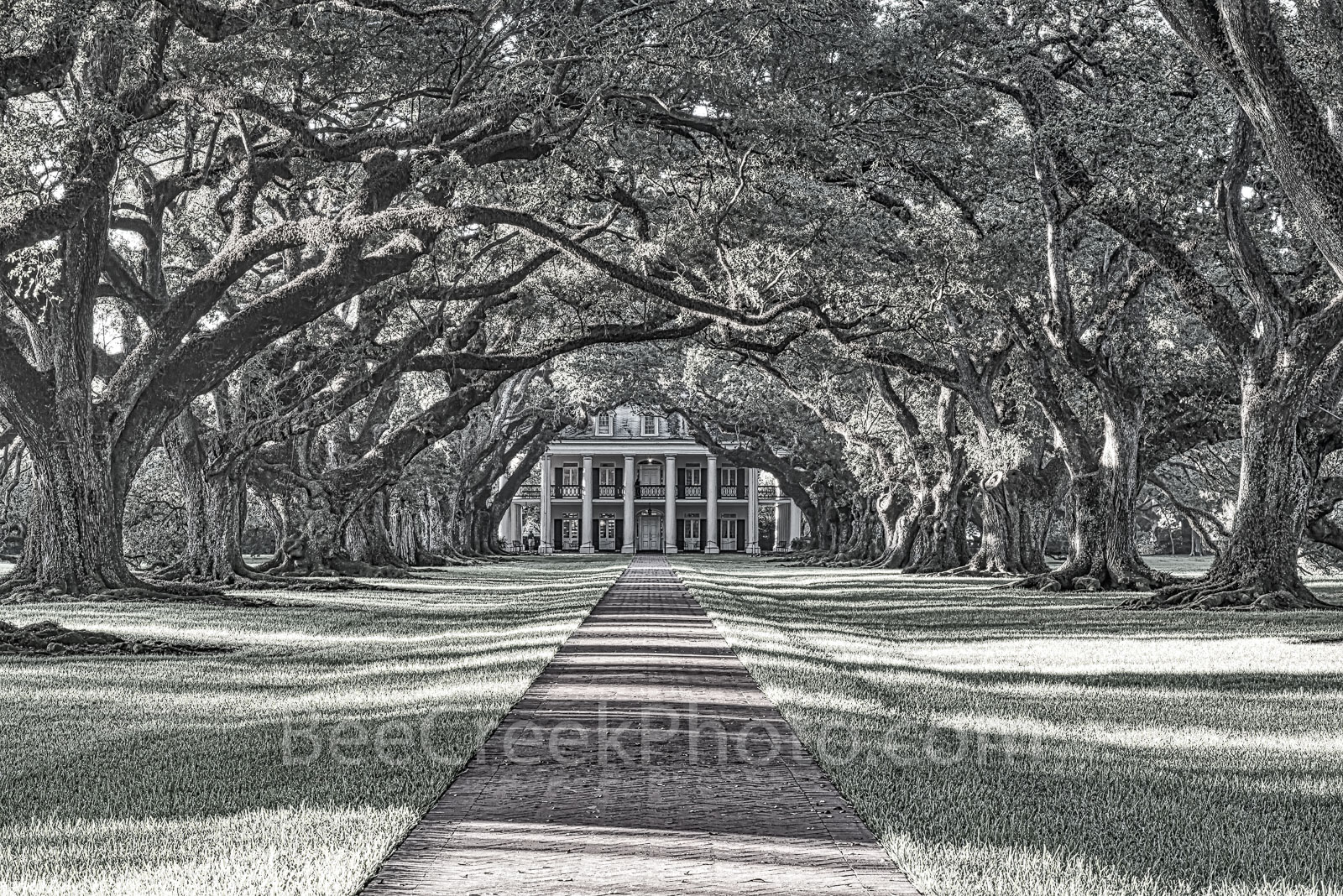 Oak Alley Plantation, mansion, black and white, bw, historic, landmark, southern, deep south. southern plantation, oak valley, seven oaks, slave, sugar cane, fields, tour, slavery, usa, , photo