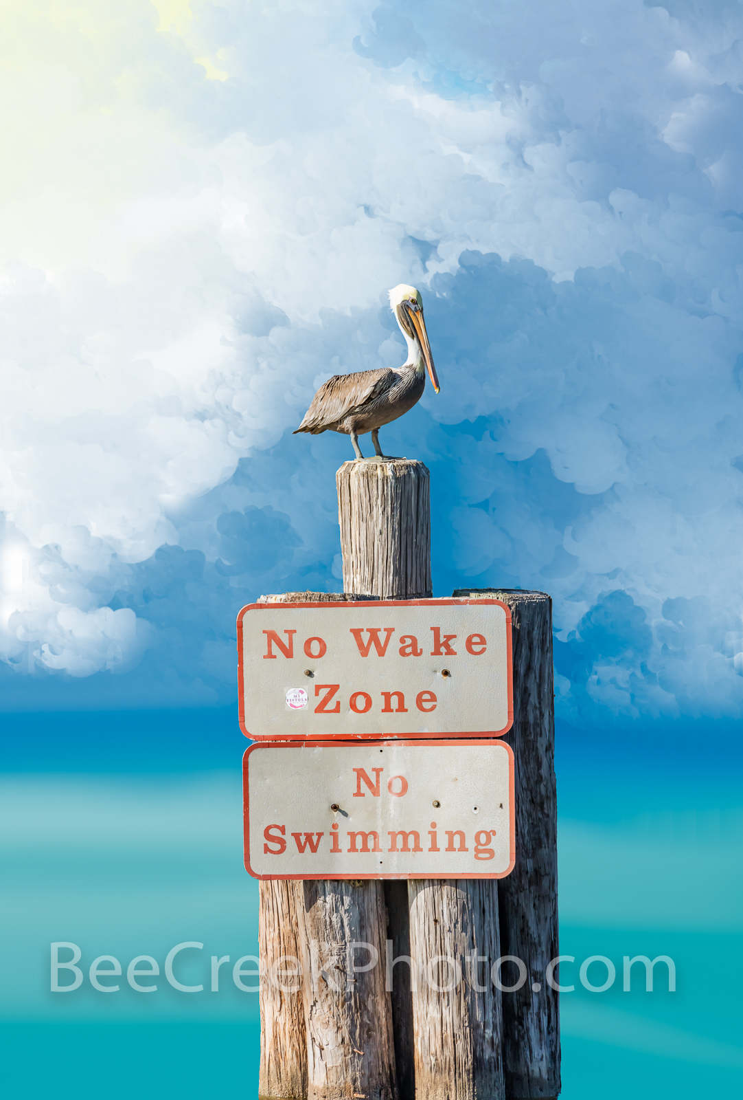 Pelican King - We name this the Pelican King because his stoic pose on top of the post with the no wake zone sign which just...
