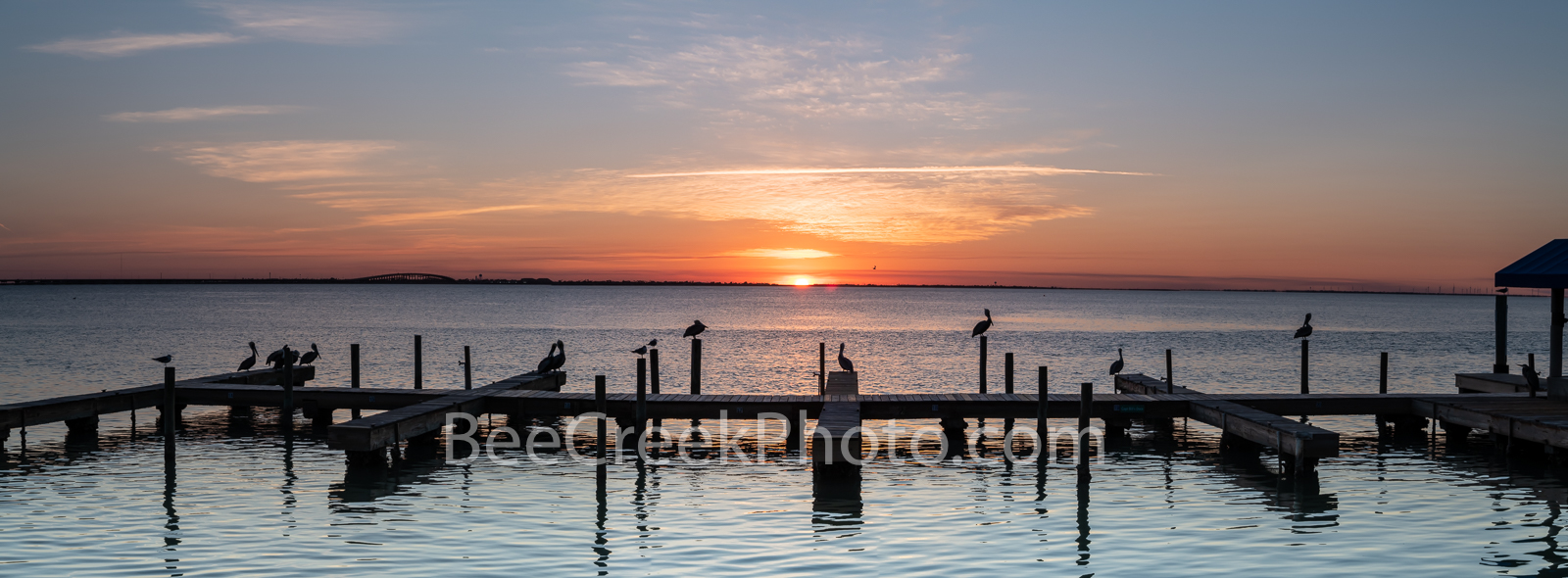 Pelican Sunset Pano - The pelicans and seagulls gather on these docks as the sun set in the distance for a wonderful coastal...