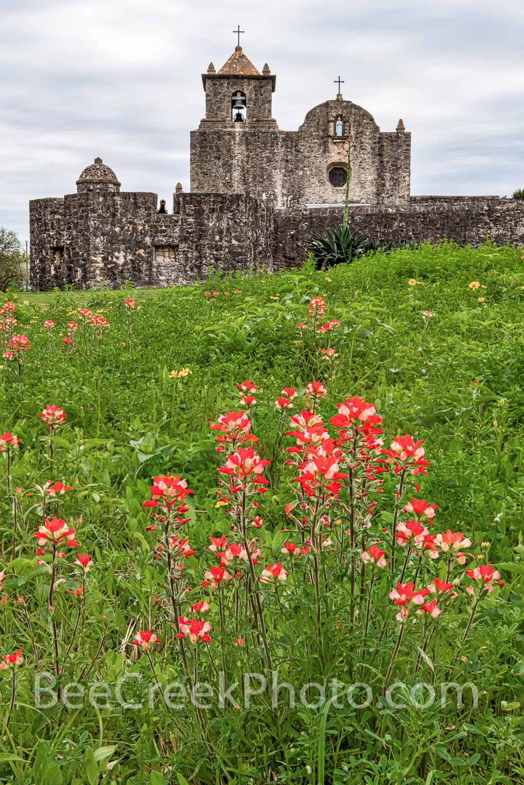 Presidio Goliad Tall - Another view of the Presidio Goliad or Presidio La Bahí in Goliad on a spring day with texas wildflowers...