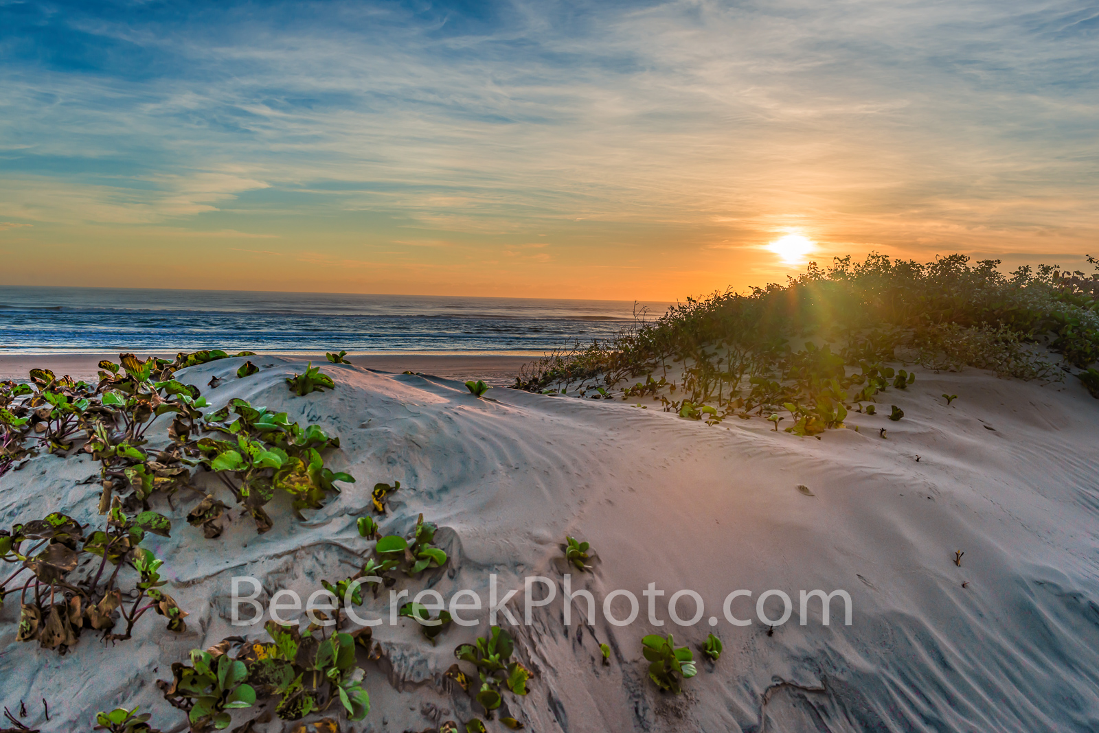 Sand Dune at Sunrise -  We took this as the sunrises over the ocean casting a bit of color at the horizon along the surf and...