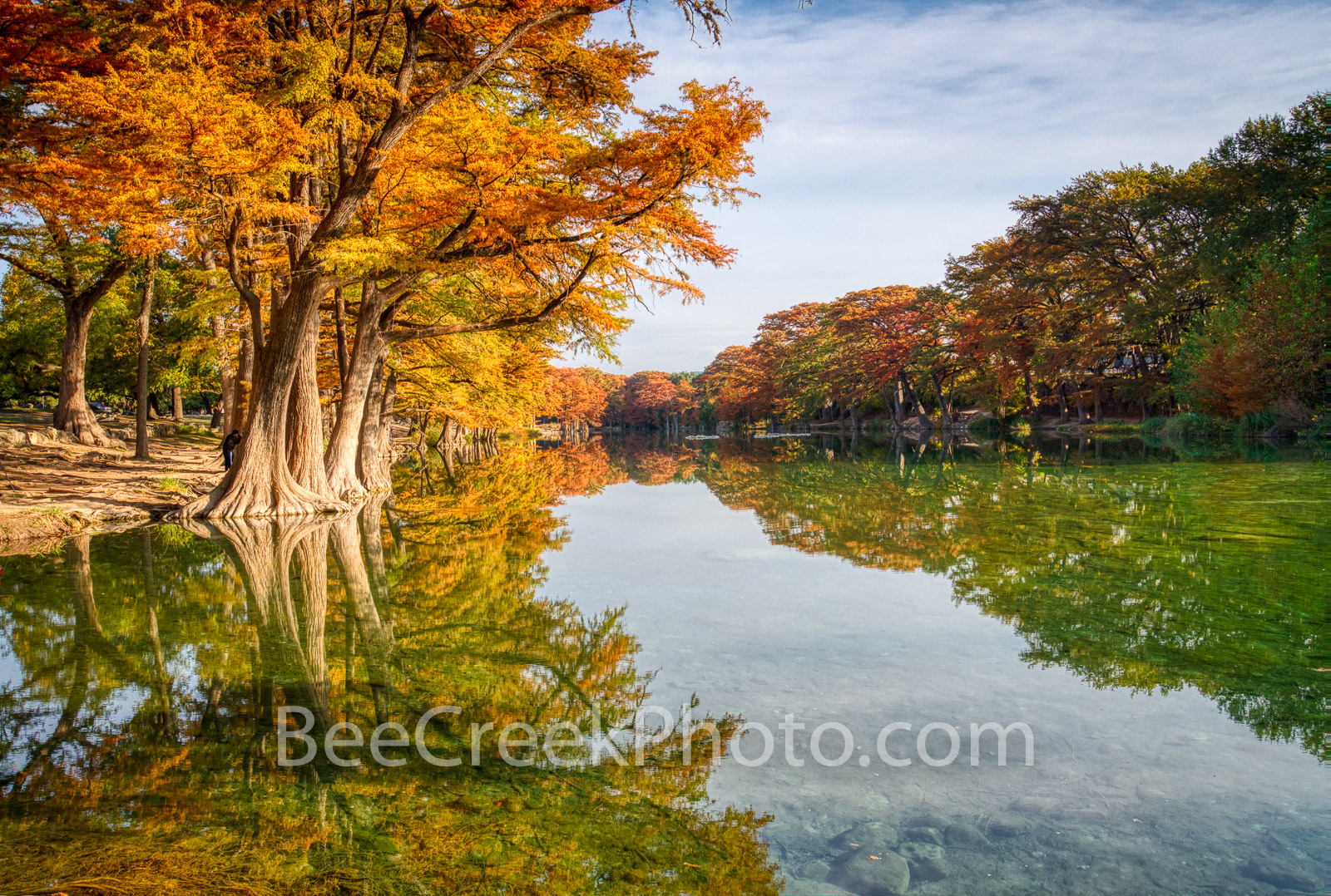 fall, frio river, scenic, fall scenery, autumn, autumn scenery, fall colors, texas hill country, hill country, colorful, bald cypress, fall season, emerald green water, river banks, river, serene, , photo