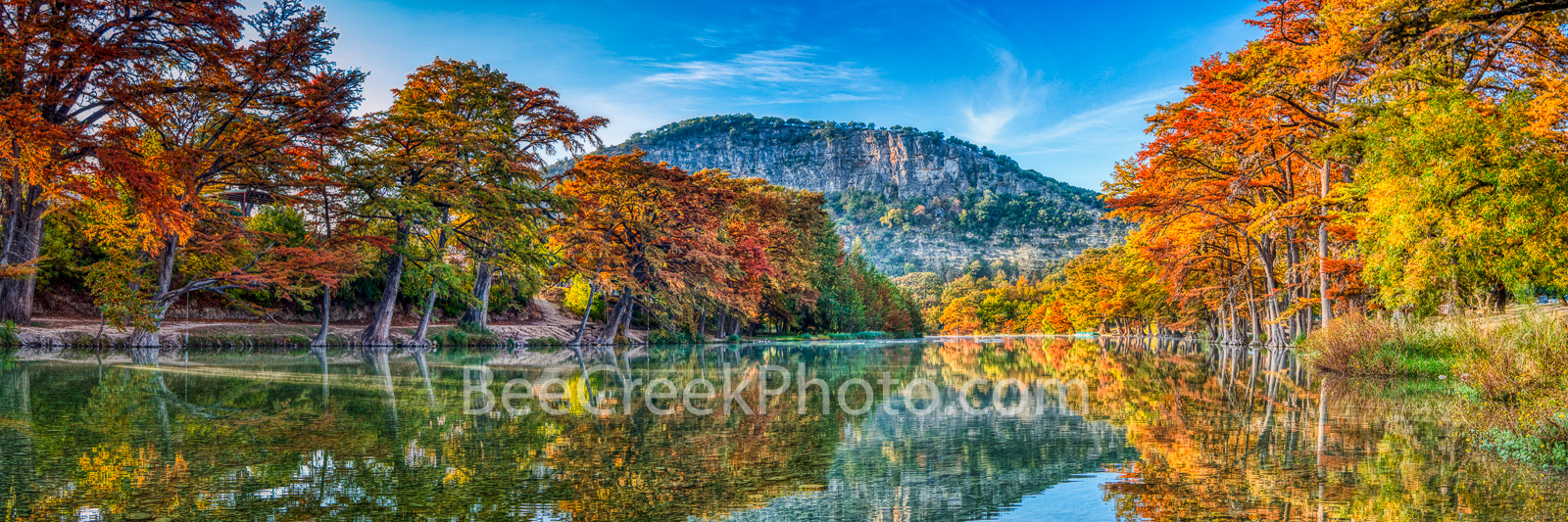 frio river, autumn, bald cypress, texas hill country, fall, old baldy, river, water, reflections, yellow, golden, red, orange, rusty, fall landscape, cypress, hill country, pano, panorama, fall scener, photo