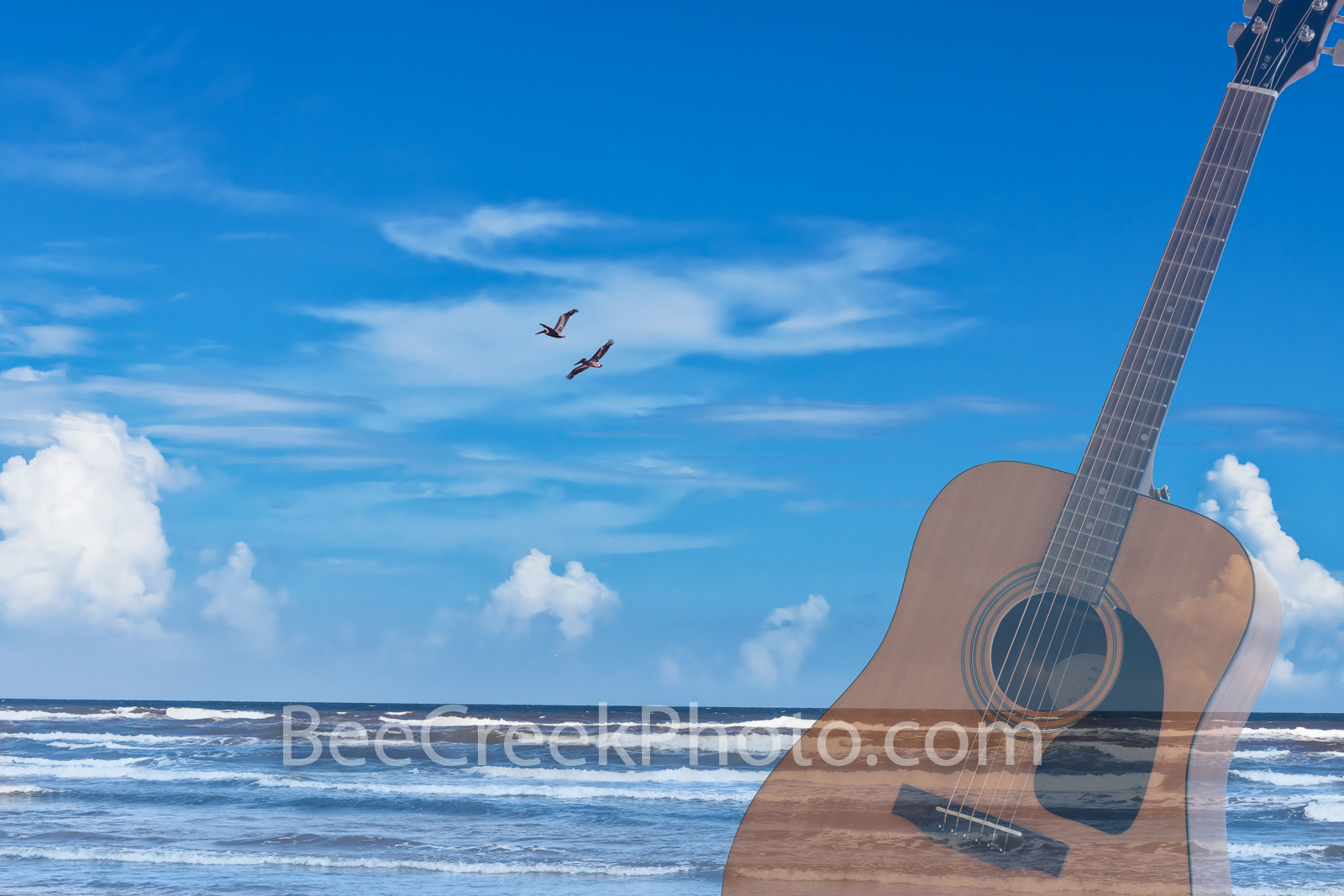 Seaside Guitar Blues - This ocean side surf with pelicans flying over create the mood for some sea side blues. This is a digital...