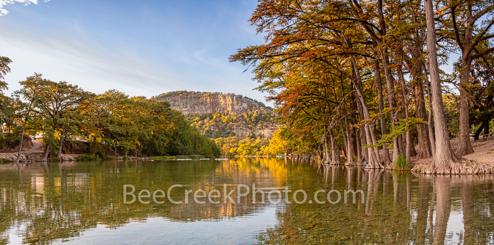 Texas, Garner State Park, Frio River, autumn, bald cypress, texas hill country, fall, old baldy, river, water, reflections, golden, rusty, cypress, hill country, pano, panorama,, photo