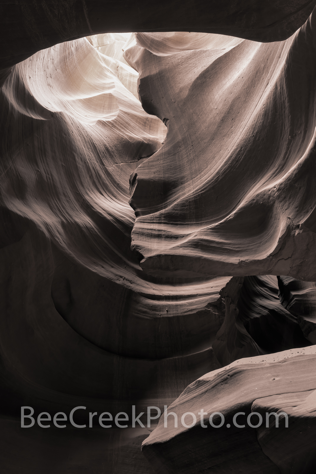 Slot Canyon Monchromatic Vertical - This abstract captures the beauty and mystery of the Antelope Canyons one of the many slot...