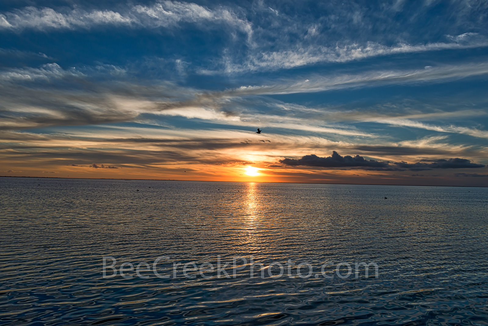 gulf coast, texas beach, birds, island, padre island, south padre bay sunset, south padre island, sunset, bay, nature, pelican, bird, water, coast, Texas landscape, coastal, Texas coastal landscape,gu, photo