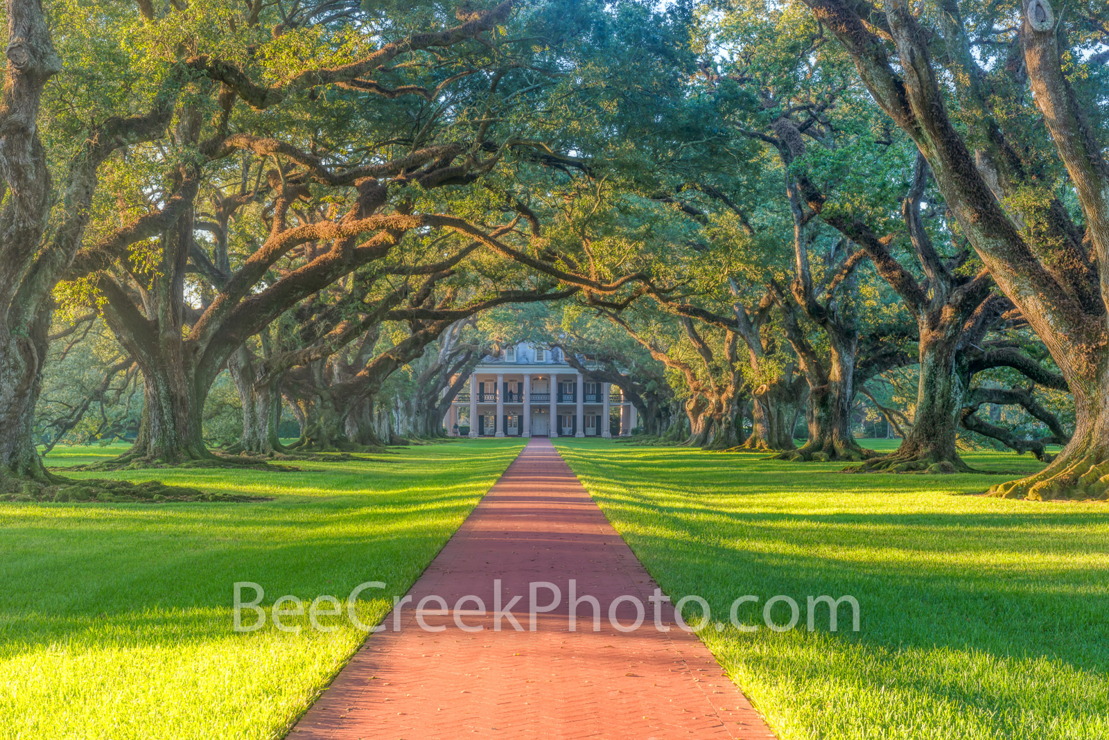 Lousiana, National Historic Landmark, Oak Alley Plantation, Sunrise, big house, canopy, landscape, landscapes, mansion, mississippi, oak trees, plantation, sidewalk, slaves, sugar cane, photo