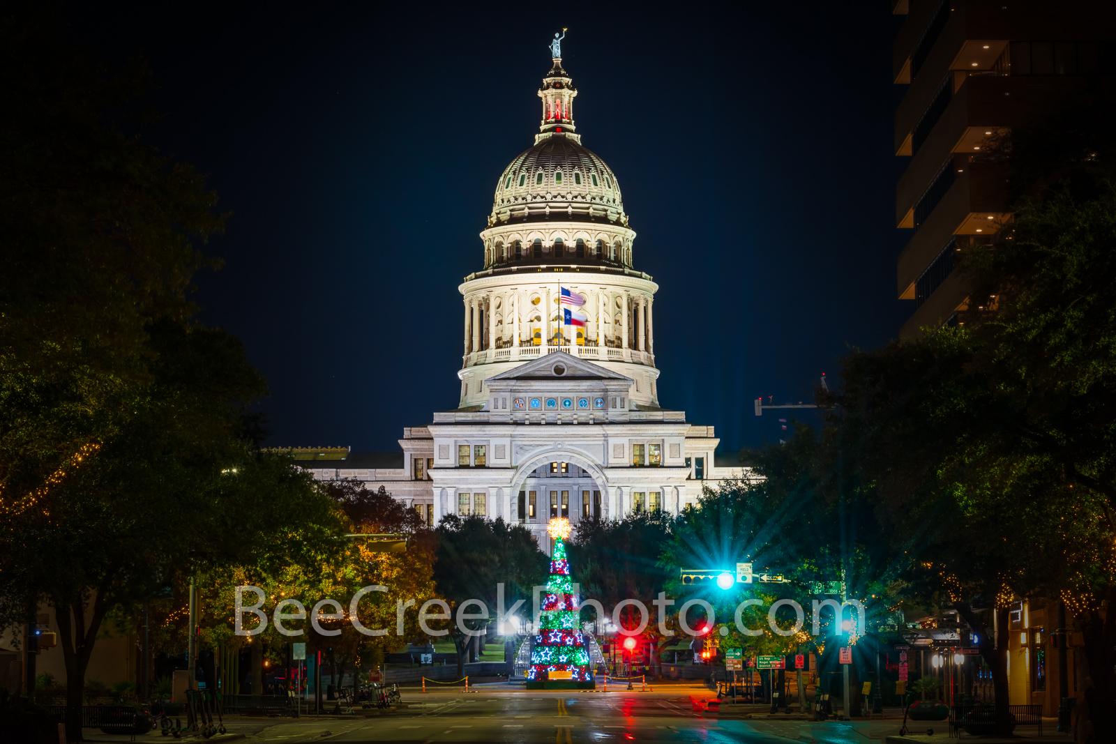 austin, capitol, texas capitol, capital, chistmas tree, christmas, city, downtown, light, holiday, congress ave, austin texas, downtown austin, city of austin, , photo