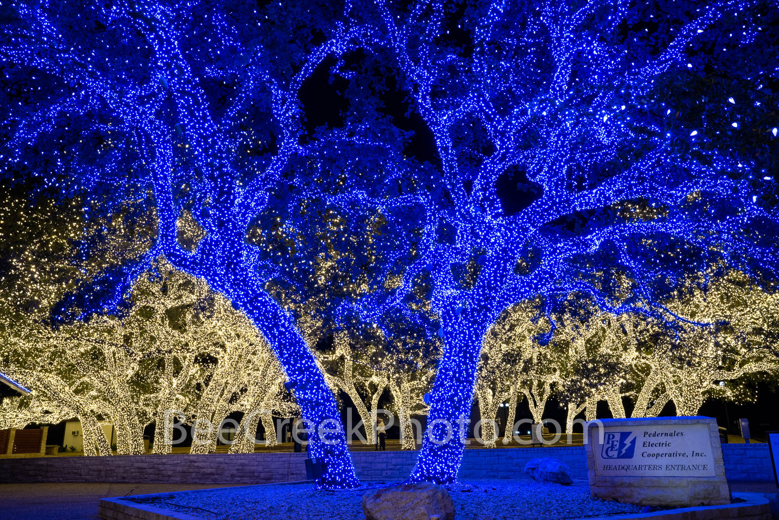 texas hill country, texas hill country christmas, pedernales electric cooperative, johnson city, christmas lights, johnson city, blue lights, white lights, christmas decorations, trees, hill country, , photo