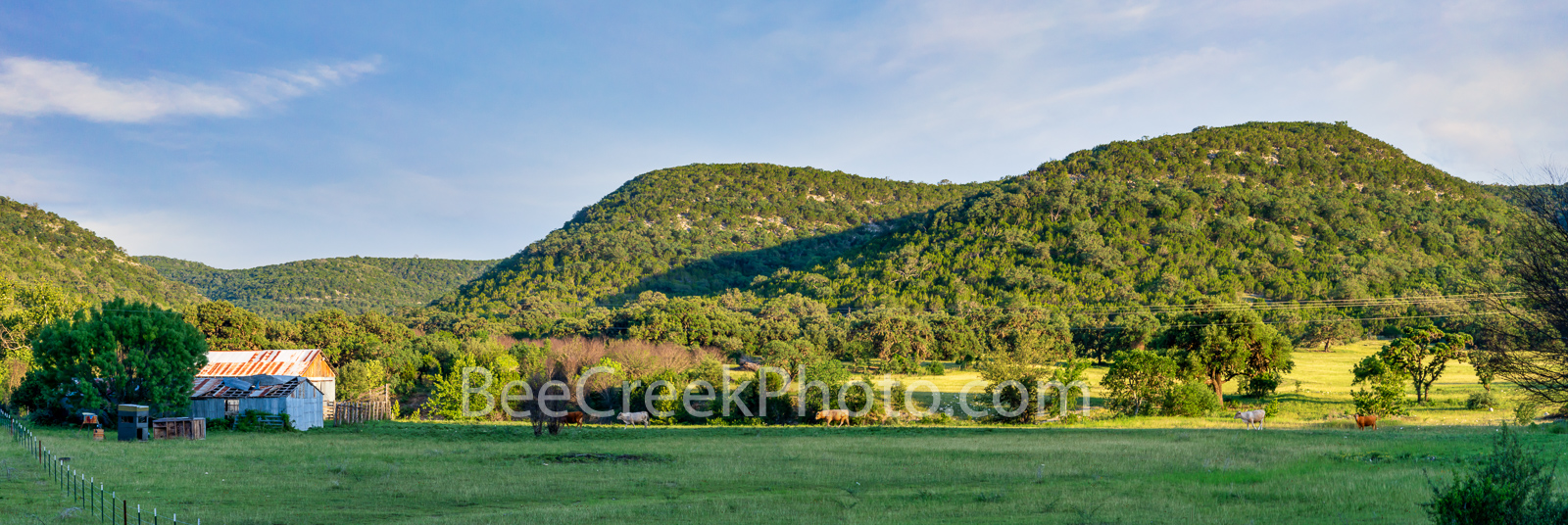 Texas Hill Country Rural Landscape - We came upon this worderful old barn and a few cows heading that way with the hills in the...